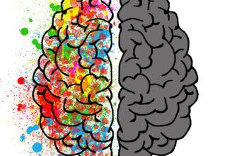 3 sfaturi cum să păstrezi creierul activ și sănătos